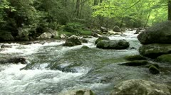 Little River in Elkmont - stock footage