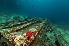 Remains and cargo of the yolanda  in the red sea. Stock Photos