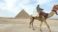 Camel infront of Kefren and Cheops Pyramids of Giza. Cairo. Egypt. - stock footage