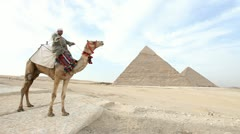 Camel infront of Kefren and Cheops Pyramids of Giza. Cairo. Egypt. Stock Footage