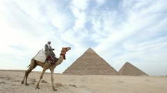 Stock Video Footage of Camel infront of Kefren and Cheops Pyramids of Giza. Cairo. Egypt.
