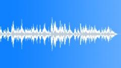 Estera Stock Music