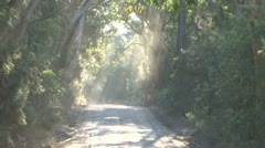 Dirt Road Dust Australia Themed Stock Footage