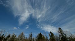 Clouds and trees wide angle lens Stock Footage