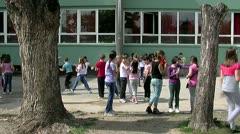 School 25 fps 01 - stock footage