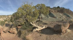 P01874 Wide Angle Scenery Shot at Colorado National Monument Stock Footage