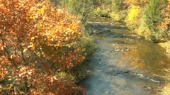 Autumn Stream - High Angle (1080-24FPS).mp4 - stock footage