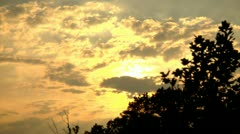 Late Afternoon Sky with foreground Tree Silhouettes (1080-24FPS).mp4 Stock Footage