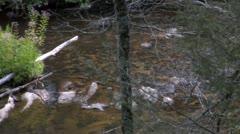 Stream (1080-24FPS) - stock footage