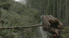 Log Truck Drives Away in Forest Stock Footage