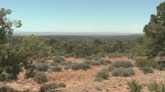 P01907 Desert Shrubland in Utah Stock Footage