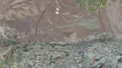 P01916 Petroglyph at Capital Reef National Park Stock Footage