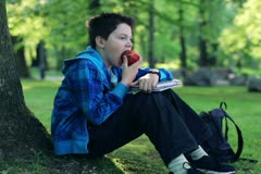 Young boy sitting by tree and eating apple in the park NTSC Stock Footage