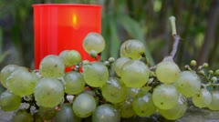 Light and grape Stock Footage