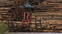 Grapple lifting clutch of logs in logging deck at mill - stock footage