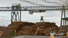 Log Grapple on Gantry Crane Repositioning at Mill Stock Footage