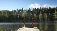 Bridges on the lake in the woods Stock Footage