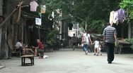 Stock Video Footage of Street scenes, old Guangzhou, Canton, traditional, culture, China