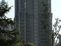 Tilt up Jinmao tower Stock Footage