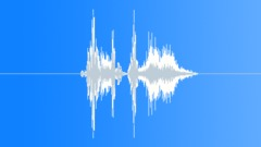 Whip Cartoon Sound Effect