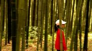 Stock Video Footage of Little girl walking through Bamboo forest