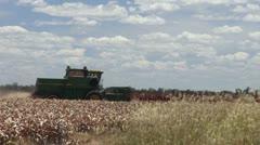 Harvesting sorghum QLD 7 1 Stock Footage