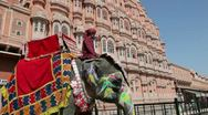 Stock Video Footage of Ceremonial decorated Elephant, Palace of the Winds, India