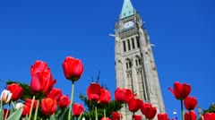 Canadian Tulip Festival in Ottawa, Canada Stock Footage
