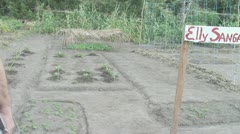 Suriname, Vegetables garden Stock Footage
