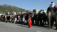 Elephants waiting to carry tourists, Jaipur, India Stock Footage