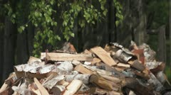 Pile of chopped firewood Stock Footage