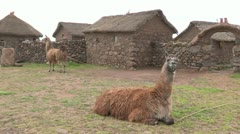 Peru: Slow Pan of Typical Farmyard - stock footage