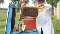 Beekeeper with honeycombs Stock Footage