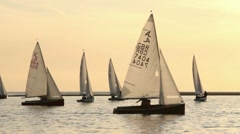 Dinghy sailing on West Kirby marina, wirral Stock Footage
