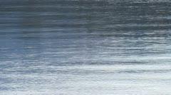 Lake  water gentle waves Stock Footage