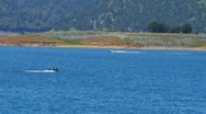 Stock Video Footage of Two Speeding Boats On New Melones Lake Near Sonora CA