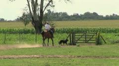 Argentina Estancia gaucho rides horse through gate Stock Footage