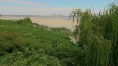Uruguay Colonia Rio de la Plata and willow Stock Footage