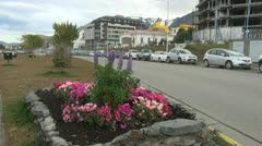 Argentina Ushuaia pink flowers in square garden by street Stock Footage