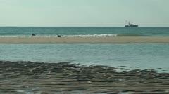 Carolina fishing industry Stock Footage