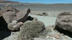 Chile Atacama rock furry with cactus 10 Stock Footage