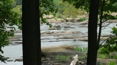 looking from behind two trees at a beautiful river panorama - hd - 1920x1080 - stock footage