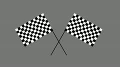Chequered Flag 2 Stock Footage