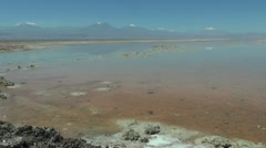 Chile Atacama Laguna Chaxa still pastel shallows 19 Stock Footage