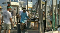 Cleaning the afternoon deep sea fishing catch Stock Footage