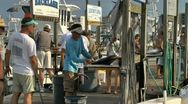 Stock Video Footage of Cleaning the afternoon deep sea fishing catch