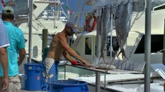Cleaning afternoon deep sea fishing catch Stock Footage