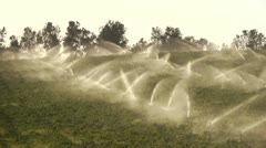 Watering greenfield Stock Footage