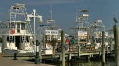 Deep sea fishing boats along Destin marina Stock Footage