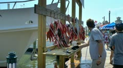 Filleting and cleaning freshly caught deep sea fish from Florida gulf Stock Footage